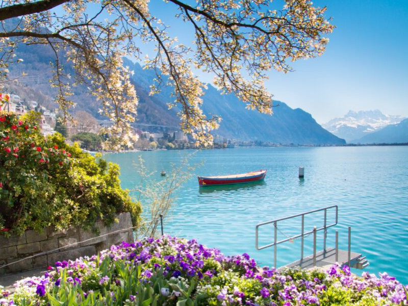 Szwajcaria z Wyspą Kwiatów Mainau 8